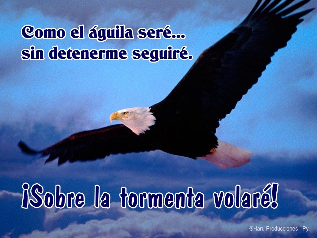 Imágenes cristianas con águilas - Imagui