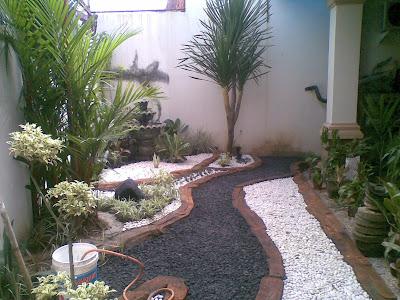 taman depan rumah ,taman halaman blakang ,rumput gajah