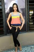 Abha Singhal latest photos at Dil Diwana press meet-thumbnail-4