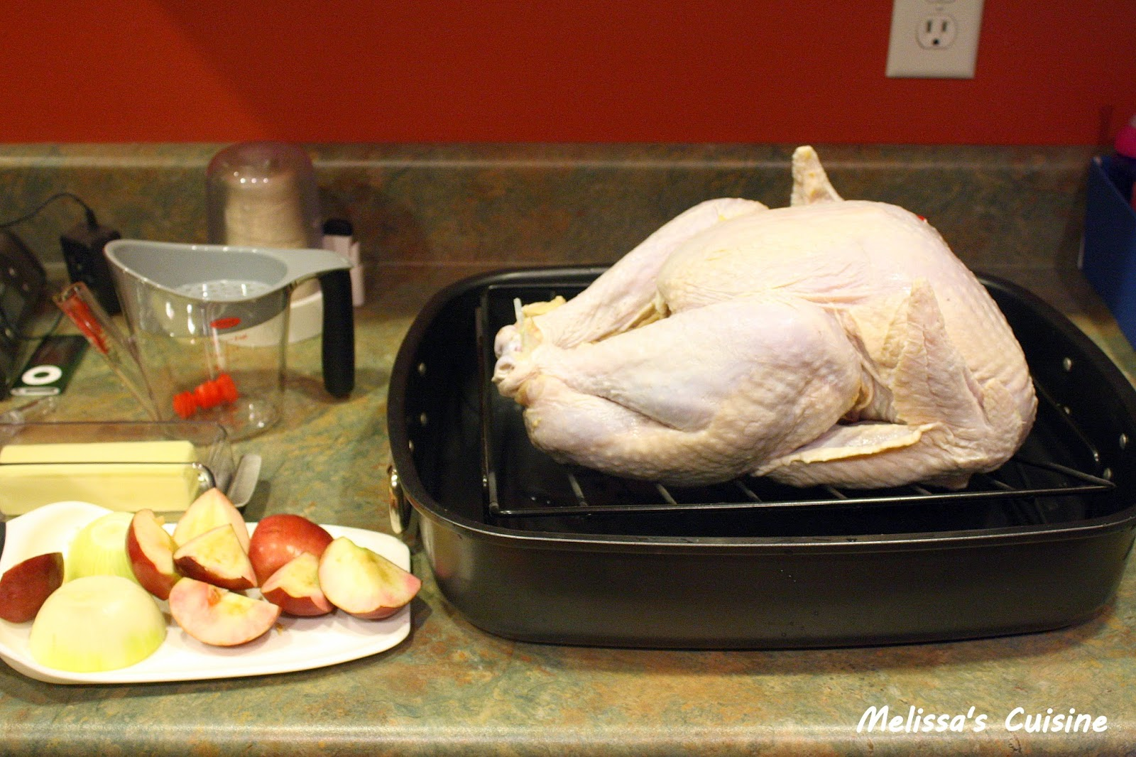 Melissa's Cuisine: The Perfect Thanksgiving Turkey