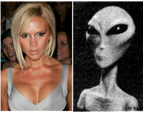 Amazing Celebrities Lookalikes