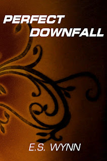 Perfect Downfall