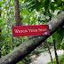 Dzień w dżungli - czyli zielona strona wyspy Penang