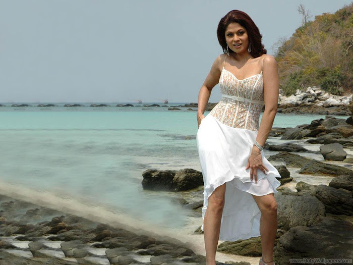 Shamita Shetty HD Wallpaper -09