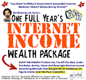 One Year's Internet Wealth Package