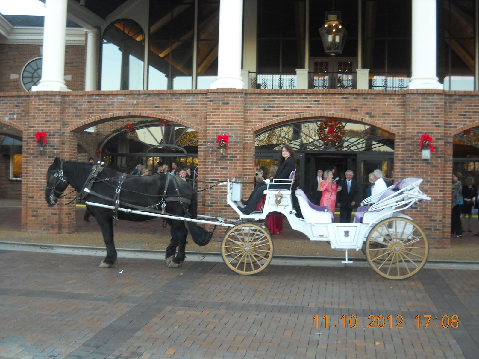 Horse Drawn Carriage Wedding Horse Drawn Wedding Carriage