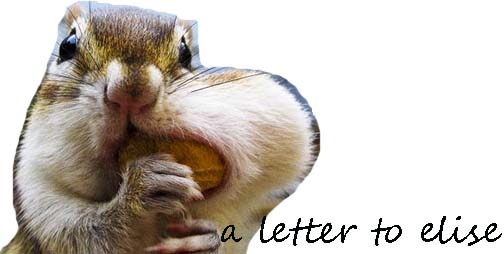 A Letter To Ellise