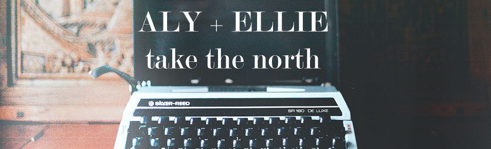 Aly + Ellie take the north