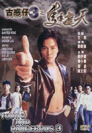 Một Tay Lấp Trời - Người Trong Giang Hồ 3 - Young And Dangerous 3 (1996)
