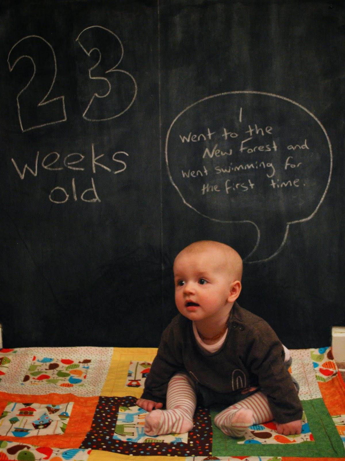 23 Weeks Old.