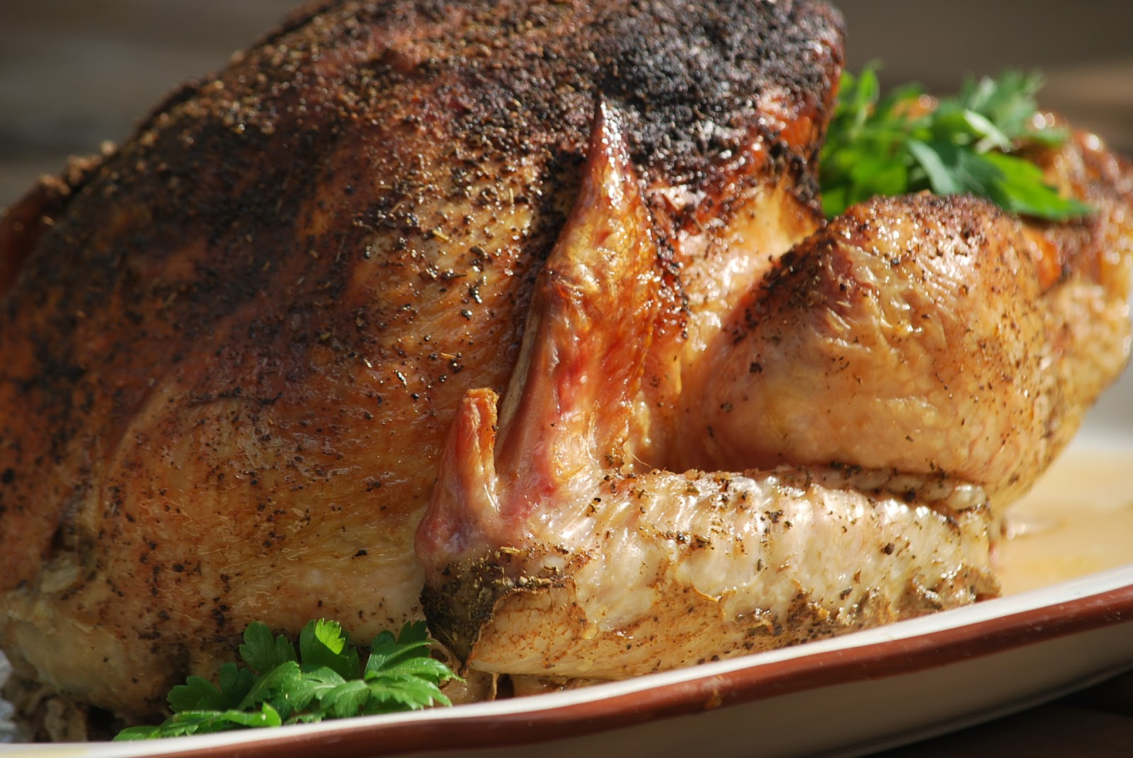 Grill-Roasted Turkey Recipe — Dishmaps