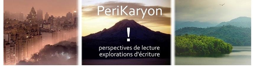 PeriKaryon