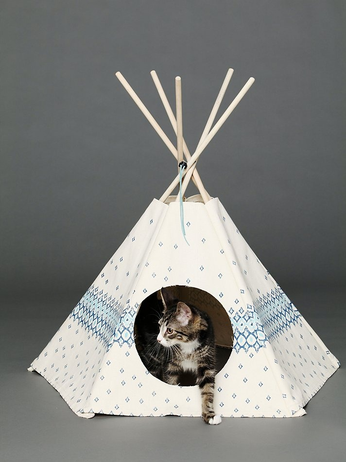 Love for cats for Diy cat teepee