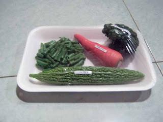 Food model alat peraga konseling gizi