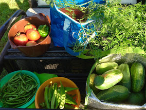 More produce from the farm!