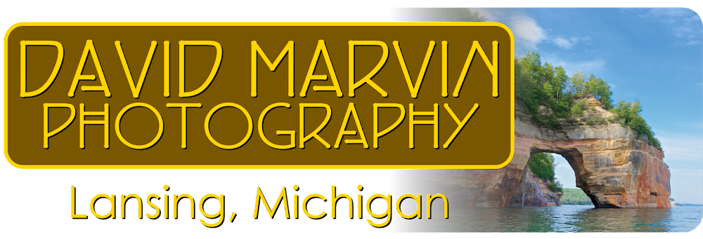 David Marvin Photography - Lansing, Michigan