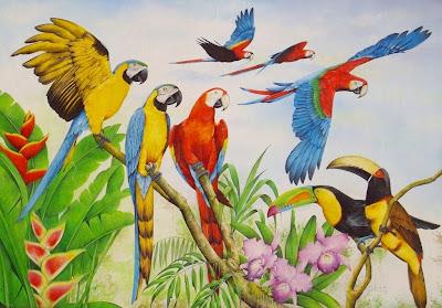 aves-pintura-oleo