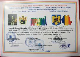 Diploma obţinută de prof. Daniel Nedeloiu, pentru coordonarea celor trei elevi