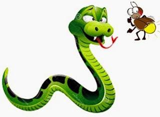 TIl serpente e la lucciola che brillava troppo (Buddha)