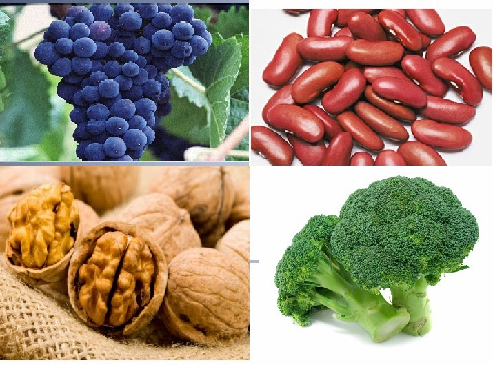 5 Super Foods that Will Change Your Life
