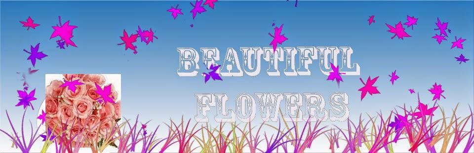 ดอกไม้สวยงาม