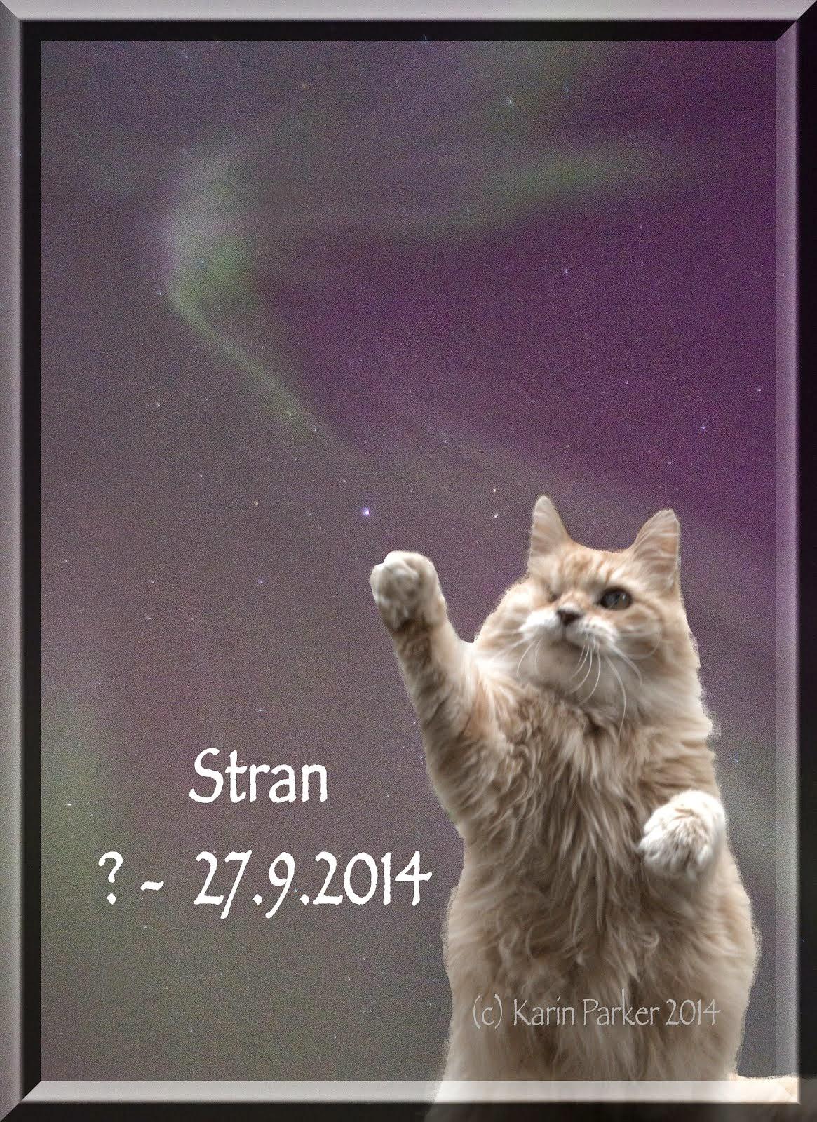 Stran