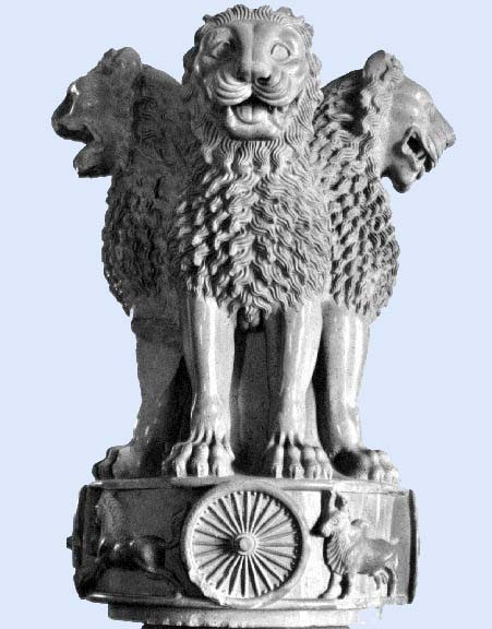 Allahabad High Court Result For Personal Assistant Post | Govt Job451
