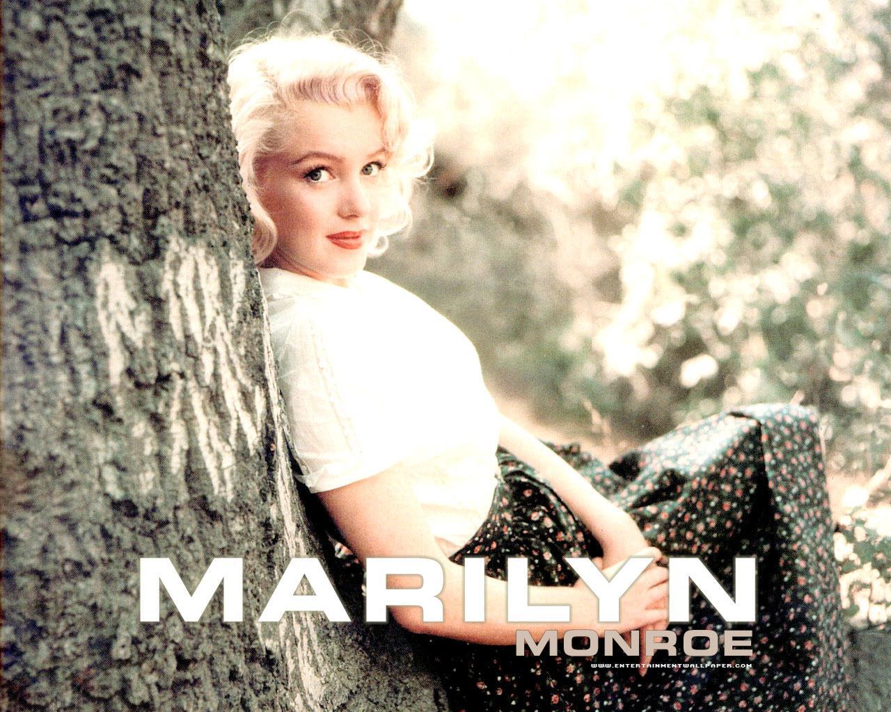 marilyn monroe desktop wallpapers ministry of wallpapers