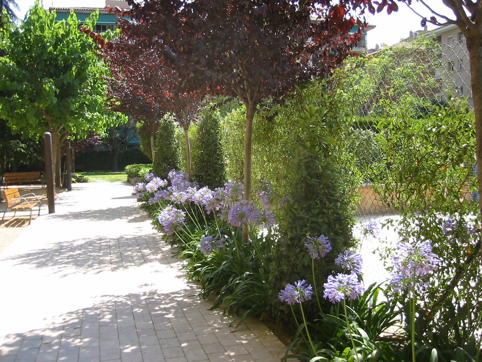 Jardinitis jard n de una comunidad de vecinos - Disenador de jardines ...