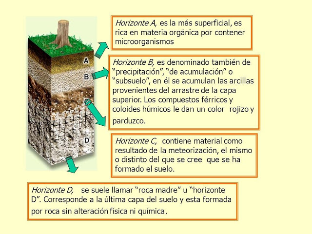 Geologia semana 4 for Proceso de formacion del suelo