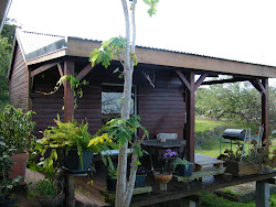 Le gîte et sa terrasse