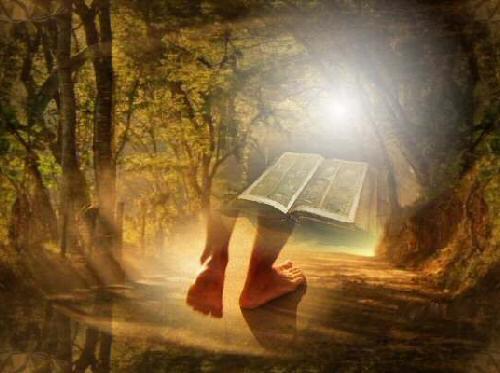 a bíblia e os passos de um garoto