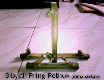 Contoh Pring Pethuk