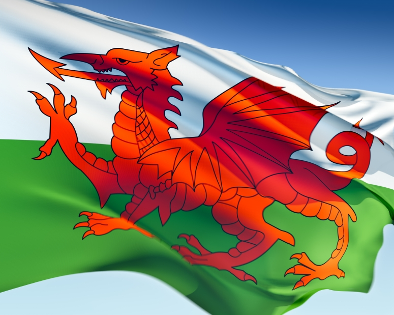 Rugby World Cup 2015: The full details of what lies in store for Wales ...