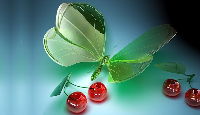kelebekler vişne meyva kiraz masaüstü arka plan resimleri