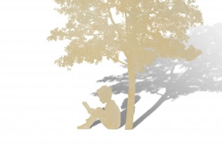 Boy reading under tree
