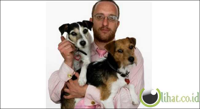 Tillamook Cheddar the Dog: (Binatang Pelukis Paling Sukses di Dunia)