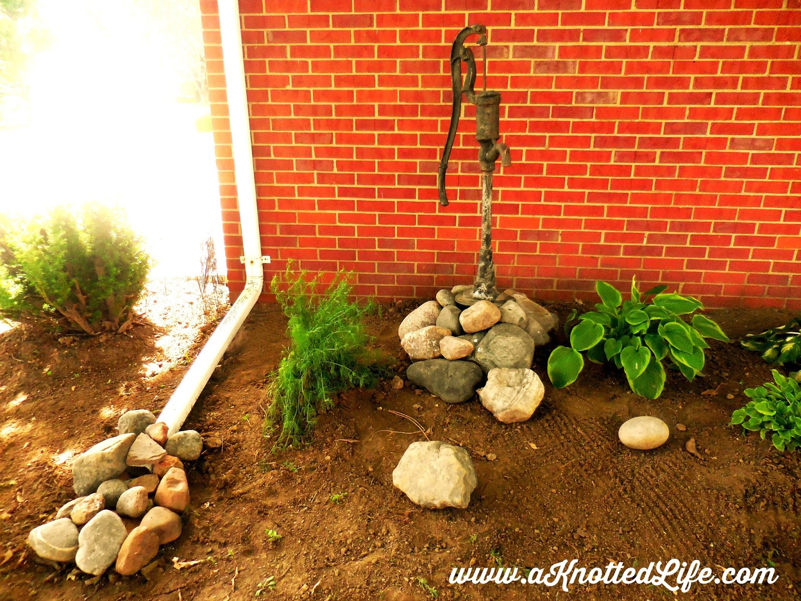 The water pump came from our old house  and my husband kindly moved it for  me  The rocks came from another friend s landscaping  Last summer they were. A Knotted Life  A May Garden Tour  what I got from a lot of work
