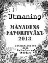 Utmaning 2013 - månadens favoritväxt
