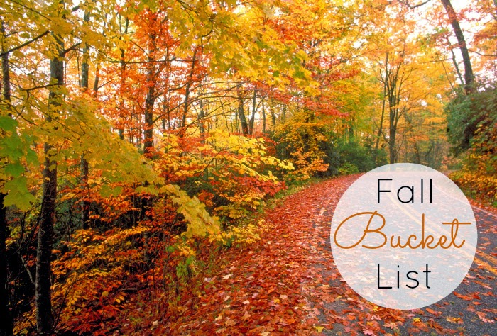http://ournashvillelife.com/fall-bucket-list-link/