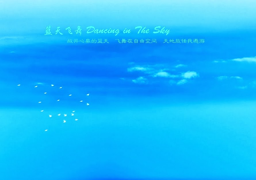 蓝天飞舞 Dancing in The Sky