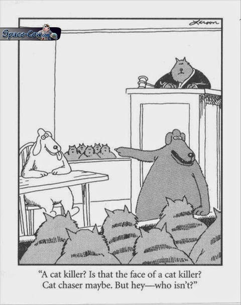 funny dog comics humor