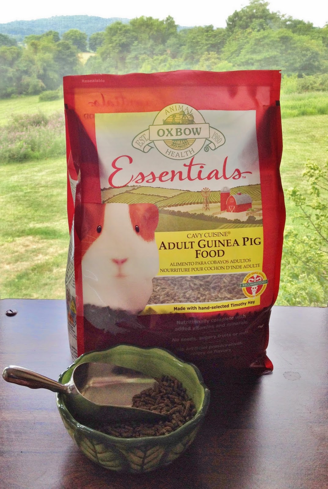 Oxbow Essentials Adult Guinea Pig food in a clean, dry bowl.