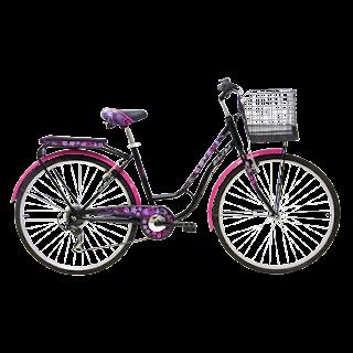 "Aneka Jaya Bike Shop: 26"" Wim Cycle College"