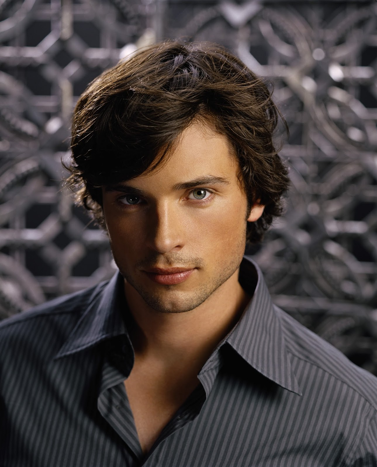 Hollywood Celebrities: Tom Welling Photos