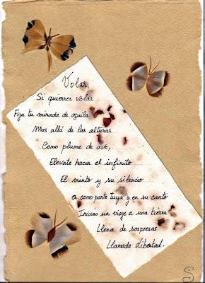 Volar (Sylvie Viaud)