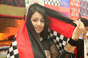 Pochampally Ikat Mela 2014 launch-thumbnail-6
