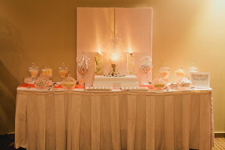 Party Feature Elegant Wedding