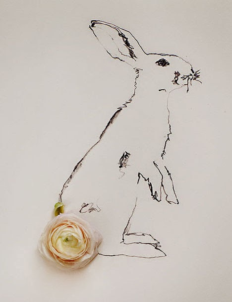 rabbit floral photography by kari herer