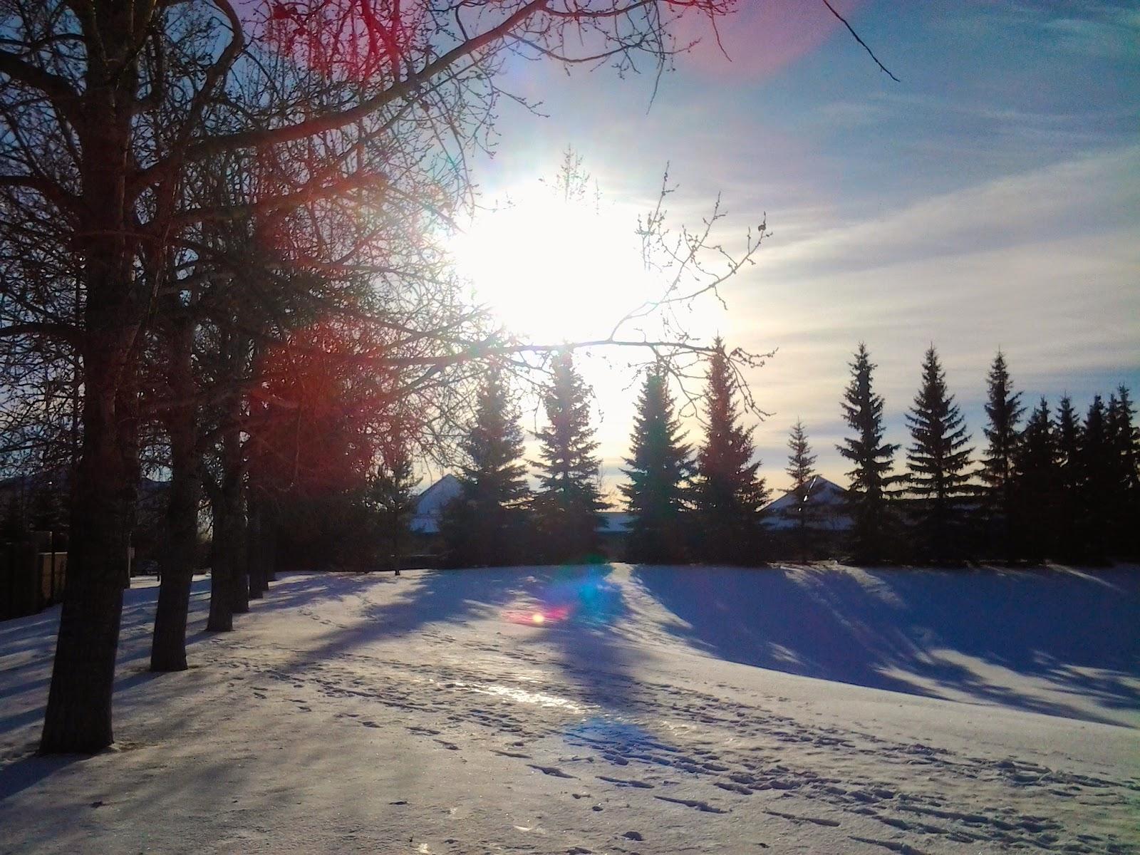 winter sun edmonton